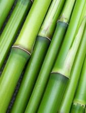 Dětské bambusové ponožky
